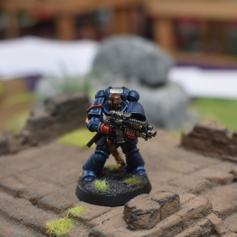 Primaris Intercessor Sergeant in jungle temple